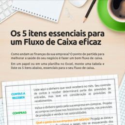 Infográfico Os 5 itens essenciais para um fluxo de caixa eficaz - Sebrae