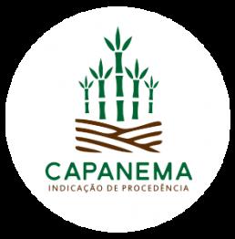 Logo IG Capanema Melado