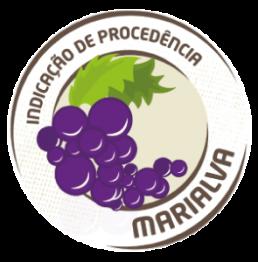 Logo IG Marialva Uvas Finas de Mesa