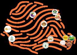 Mapa Origens Paraná 2020